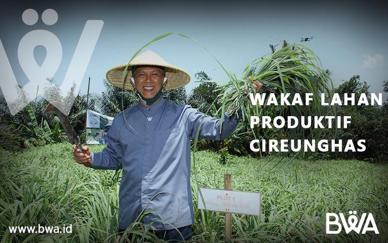 Kenalan Lebih Dekat dengan Wakaf Lahan Produktif di Cireunghas